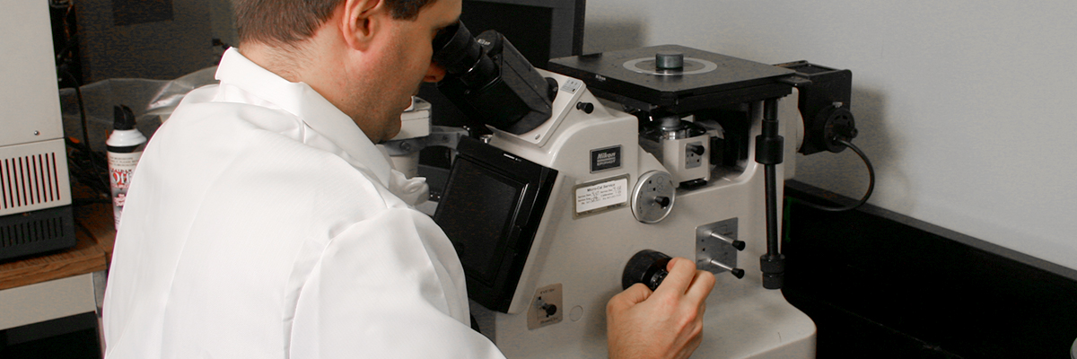 A scientist views a sample under a microscope